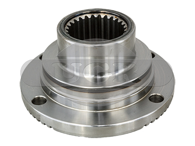 Flange, differential